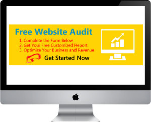 Free SEO Audit website