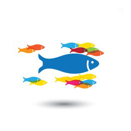 large fish influencing others to follow for influencer outreach services brighton
