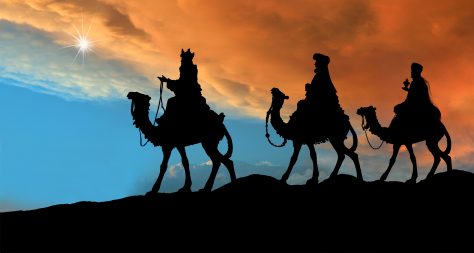 wise men carrying seo guides